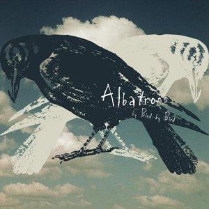 Imagen de 'Albatross'