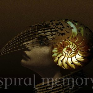 Image for 'Spiral Memory'