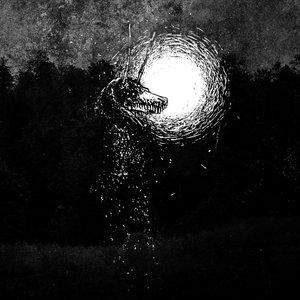 Image for 'Singularity'