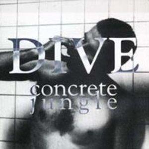 Image pour 'Concrete Jungle'
