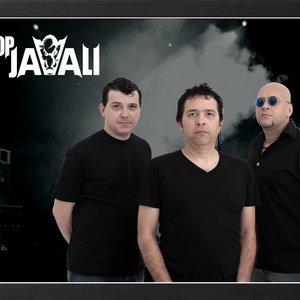 Image for 'Pop Javali'