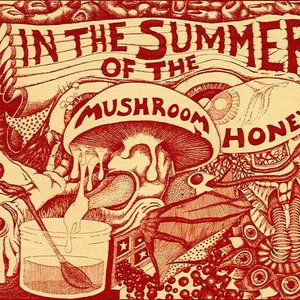 Image for 'In The Summer Of The Mushroom Honey'