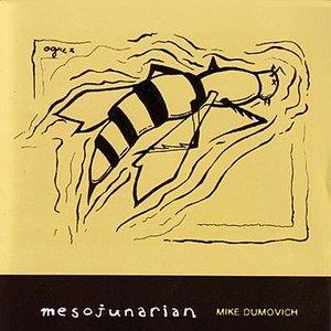 Image for 'Mesojunarian'