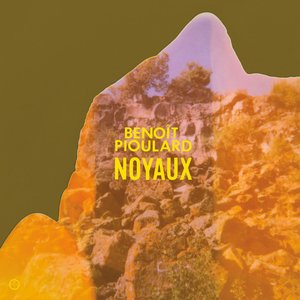 Imagen de 'Noyaux'