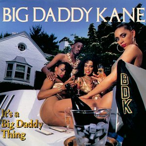 Image for 'It's a Big Daddy Thing'