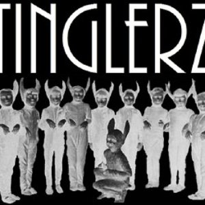 Bild för 'TINGLERZ'