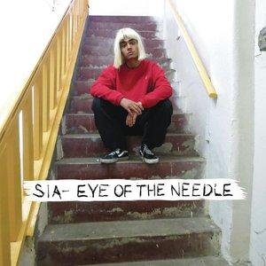 Image for 'Eye Of The Needle'