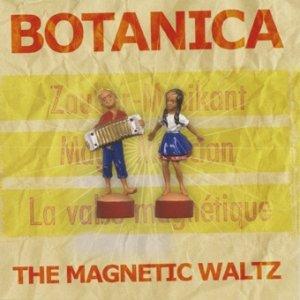 Immagine per 'The Magnetic Waltz'