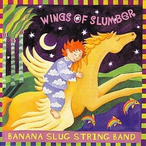 Immagine per 'Wings of Slumber'