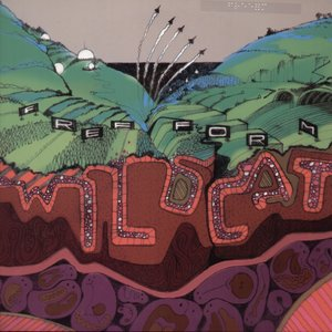Image for 'Wildcat'