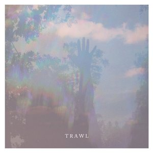 Image for 'Trawl'
