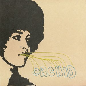 Image for 'Orchid'
