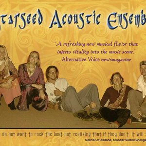 Image for 'Starseed Acoustic Ensemble'