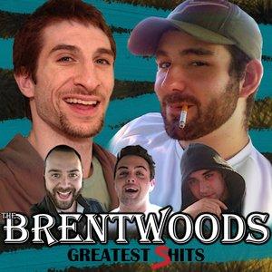 Bild för 'Greatest Shits'