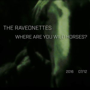 Image for 'Where Are You Wild Horses'