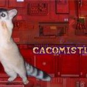 Image for 'cacomistle'