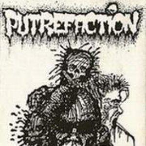 Image for 'Putrefaction'