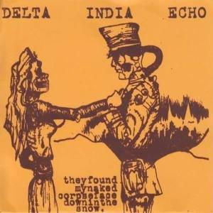 Image for 'Delta india echo'