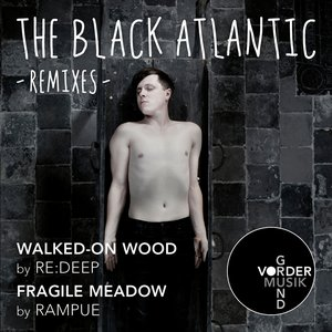 Image pour 'Walked-On Wood / Fragile Meadow (Remixes)'