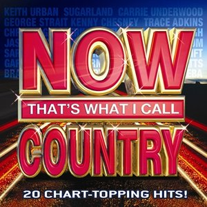 Image for 'Now That's What I Call Country'