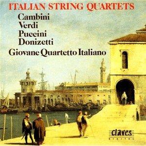 Image for 'String Quartet Op. 40 No. 3: Allegro risoluto e rustico'