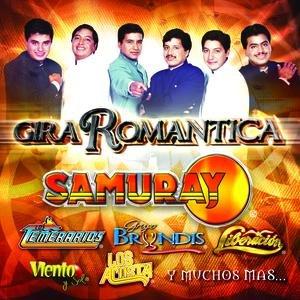 Image for 'Gira Romántica'