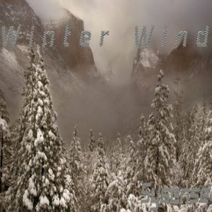Imagen de 'Winter Wind'