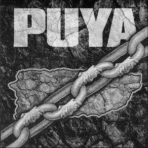 Image for 'Puya'