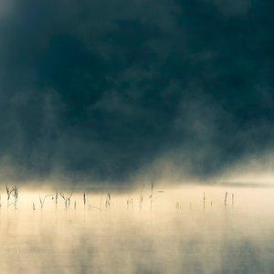 Image for 'Convivium'