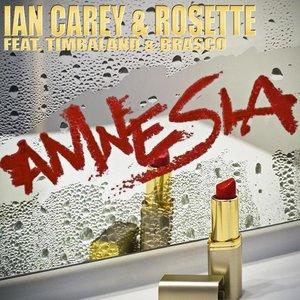 Imagem de 'Amnesia'