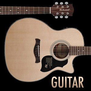 Image for 'My new guitar'