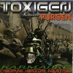 Immagine per 'Karmaoke (Purgen Remixes)'