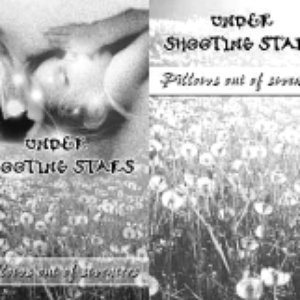 Image for 'Under Shooting Stars'