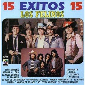 Image for '15 Éxitos'