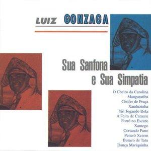 Image for 'Luiz Gonzaga Sua Sanfona E Sua Simpatia'