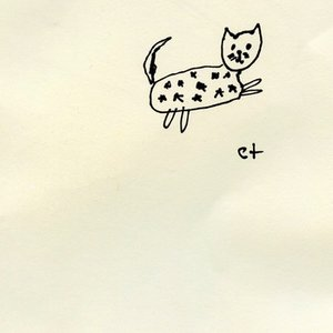 Image for 'starry cat'