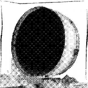 Image for '[brq 036] Nils Hoffmann - Kurz und Klein'