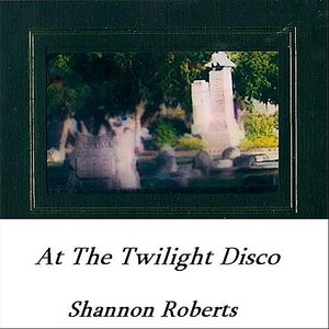 Image for 'At the Twilight Disco'