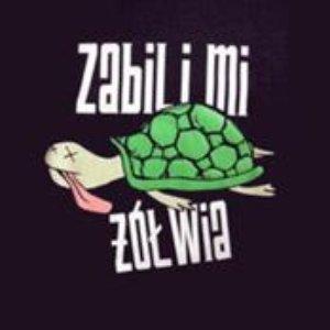 Image for 'Mordercy żółwia'