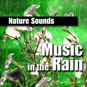 Image for 'Music in the Rain (Music and Nature Sound)'