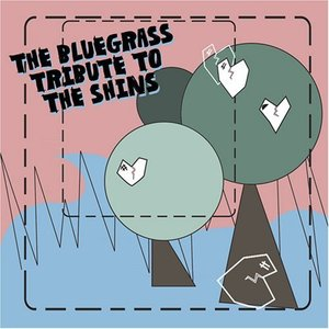Image for 'The Bluegrass Tribute to the Shins'