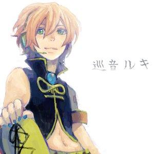 Image for '巡音ルキ'