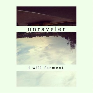 Image for 'I Will Ferment'