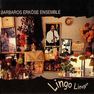 Image for 'Lingo Lingo'