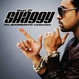 Image pour 'Best Of Shaggy The Boombastic Collection'