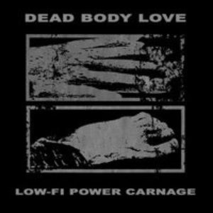 Image for 'Low-Fi Power Carnage'