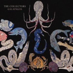Image for 'The Collectors - Galapagos'