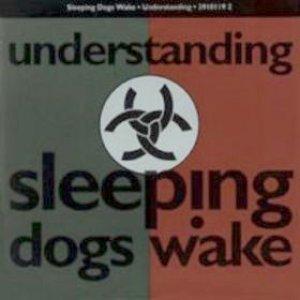 Image for 'Understanding'