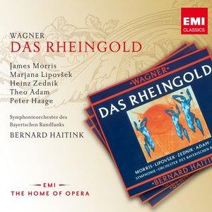Image for 'Wagner: Das Rheingold'