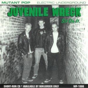 Image for 'Juvenile Wreck'